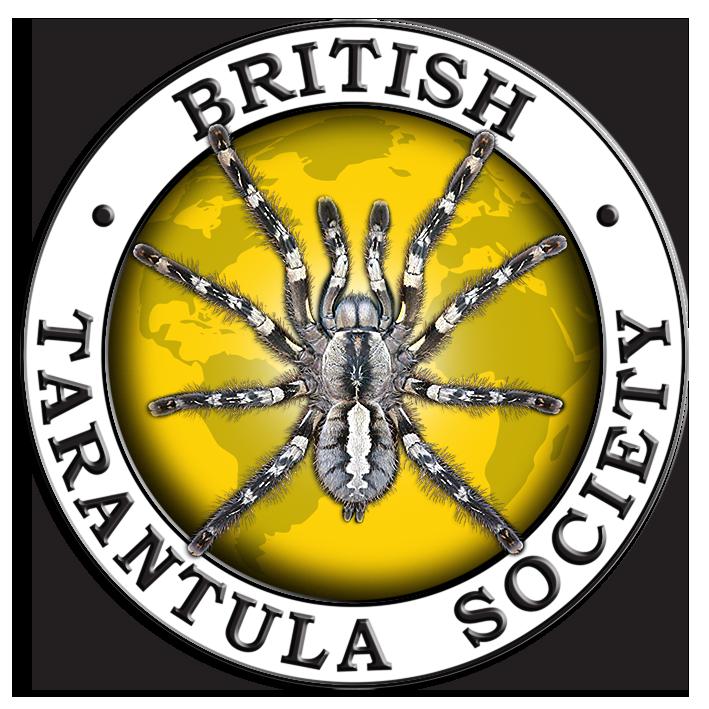 34th british tarantula society exhibition warwickshire