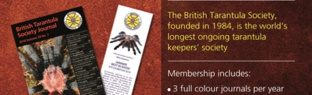 31st British Tarantula Society Exhibition  Warwickshire Exhibition Centre